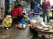 生活筆記:傳統市場販售海鮮水產的阿喵-15.jpg