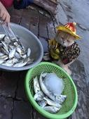 生活筆記:傳統市場販售海鮮水產的阿喵-19.jpg