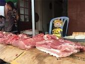 生活筆記:傳統市場販售海鮮水產的阿喵-13.jpg