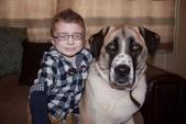 生活筆記:A Boy and His Dog.jpg