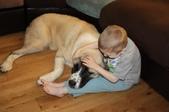 生活筆記:A Boy and His Dog-01.jpg