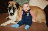 生活筆記:A Boy and His Dog-02.jpg
