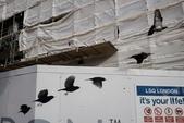 生活筆記:挪威藝術家的街頭偶拾攝影-15.jpg