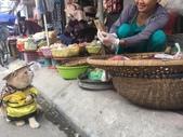 生活筆記:傳統市場販售海鮮水產的阿喵-09.jpg