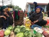 生活筆記:傳統市場販售海鮮水產的阿喵-14.jpg