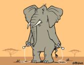 自然科學:Awesome-animal-facts-4.gif