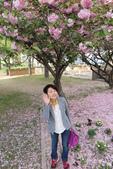 大阪京都旅遊:20140422160144.JPG