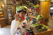 大阪京都旅遊:20140423144414.JPG
