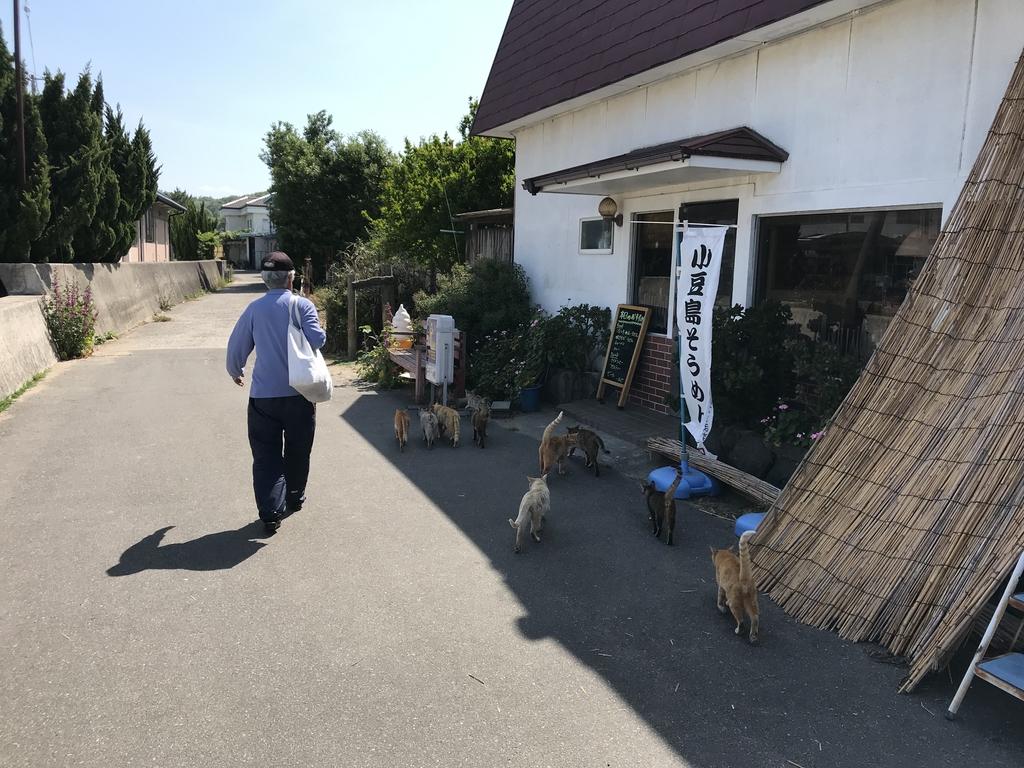 IMG_2195.JPG - 2019日本