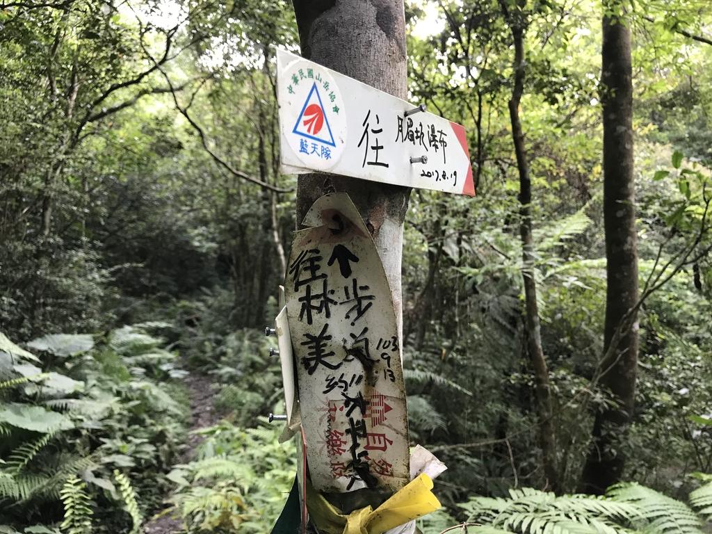 IMG_7316.JPG - 2018七月照片
