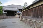 大阪京都旅遊:20140429120413.JPG