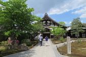 大阪京都旅遊:20140429115558.JPG