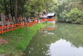 大阪京都旅遊:20140428163435.JPG