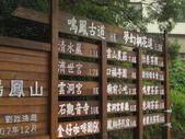 0515苗栗賞桐、明德水庫、南寮雨港:IMG_5580.JPG