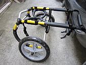 咪咪+輪椅:IMG_0665.JPG