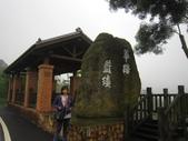 0515苗栗賞桐、明德水庫、南寮雨港:IMG_5586.JPG