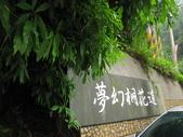 0515苗栗賞桐、明德水庫、南寮雨港:IMG_5596.JPG