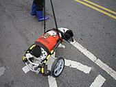 咪咪+輪椅:IMG_0678.JPG