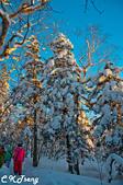 20150123東北賞雪冰凍之旅(二):長白山冰雪畫廊