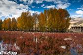 20151017大香格里拉稻城亞丁之旅-3:桑堆紅草地