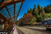 20161210阿里山知性之旅:沼平車站