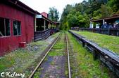 20141029紐西蘭夢幻之旅(三)瓦那卡湖與庫克山踏雪:森林鐵軌