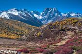 20151022大香格里拉稻城亞丁之旅-4:白馬雪山