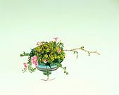 花花世界:小4.jpg