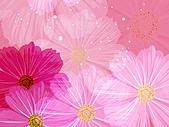 花花世界:花插畫13.jpg