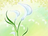 花花世界:花插畫23.jpg