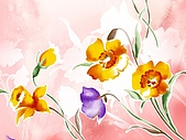 花花世界:花插畫4.jpg