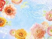 花花世界:花11.jpg