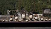 日本自助旅行-----嵐山: