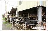 牧場:IMG_0588-1.JPG