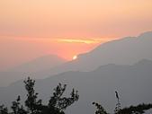 阿里山之旅:37.jpg