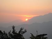 阿里山之旅:38.jpg