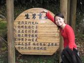 溪頭&劍湖山三日遊:小夢獨照十一