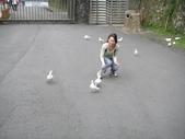溪頭&劍湖山三日遊:小夢與鴿子-1