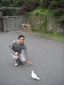溪頭&劍湖山三日遊:小汞與鴿子-1