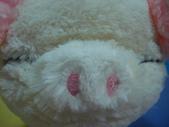 share:看看牠一臉睡眼惺忪的樣子