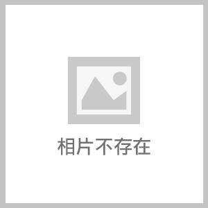 [性感裸比] GX3螢光速乾網眼長版運動平口褲三件組1100元免運(全館滿千現折100元)K1203