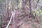 大桶山:大桶山 (35).JPG