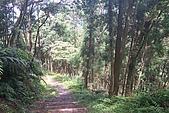 大桶山:大桶山 (22).JPG