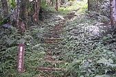 大桶山:大桶山 (29).JPG