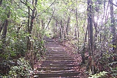 大桶山:大桶山 (45).JPG