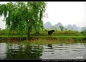 桂林印象劉三姐之旅:DSC_4343.jpg