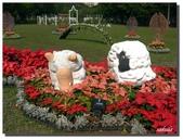 2011台北花卉展.幸福青鳥:P1000606.jpg