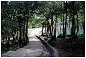 新山夢湖:DSC_9741.jpg