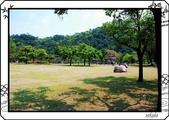 2008 綠色博覽會:DSC_4020.jpg