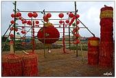 宜蘭銀柳節花海:DSC_2382.jpg